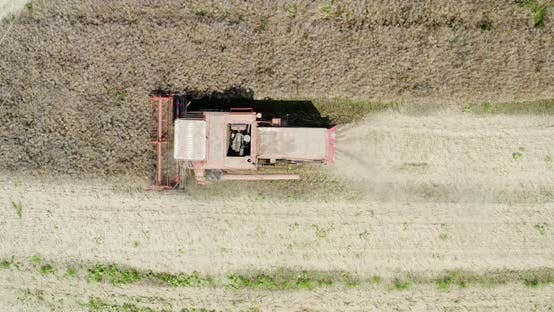Cover Image for Agriculture Harvester Harvesting Field Aerial View