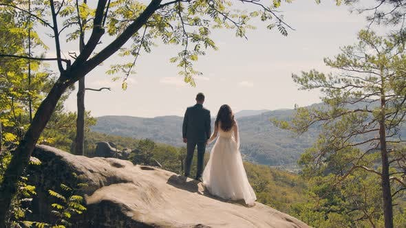 Thumbnail for A Happy Couple of Brides Stand on the Mountain with Their Backs To the Camera and Look Into the