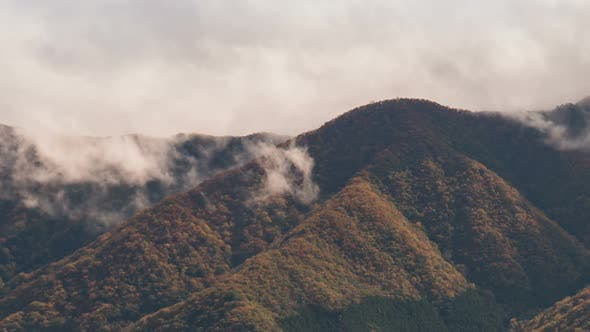 Cover Image for Fog With Mountain In Autumn