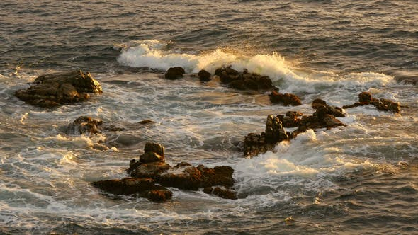 Cover Image for Golden Sea Water on the Rocks