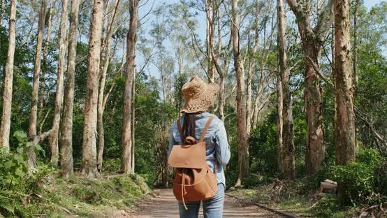 Thumbnail for Woman look at the forest in hiking trail