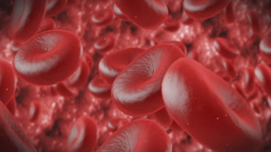 Thumbnail for Red Cells