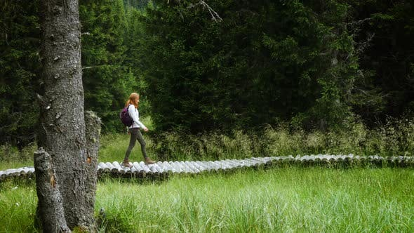 Thumbnail for Girl Hiker Walking By The Wooden Walkway Path 4