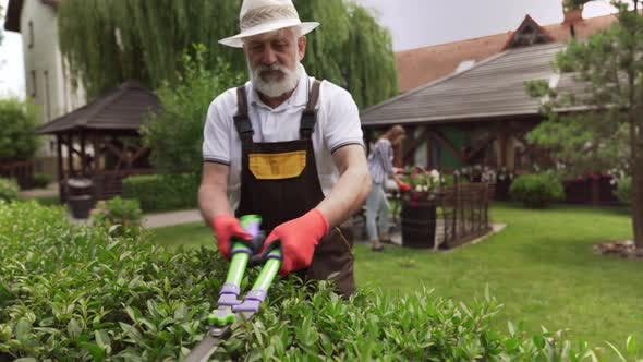 Thumbnail for Mature Man Pruning Hedge and Girl Taking Care of Flowers