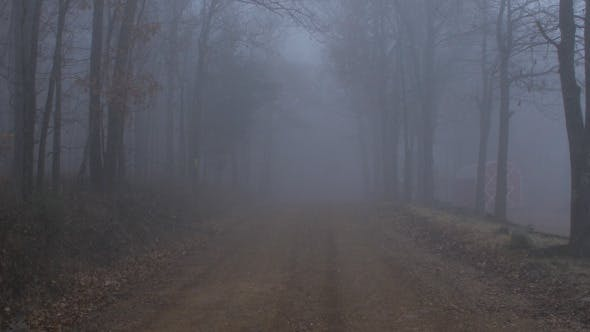 Thumbnail for Scary Foggy Forest Road