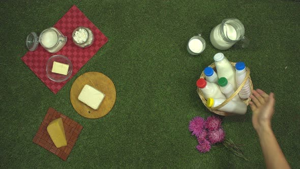 Cover Image for Dairy Products on Grass.