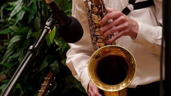 Thumbnail for Guy Playing The Saxophone Gold