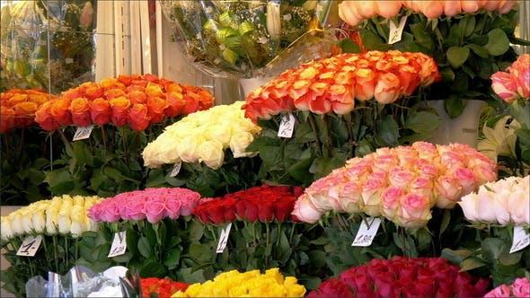 Bunte Tulpen auf dem Blumenladen angezeigt
