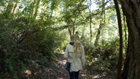 Thumbnail for Girl in the Forest