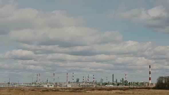 Thumbnail for Oil Plant