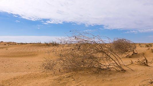 Thumbnail for Desert 4