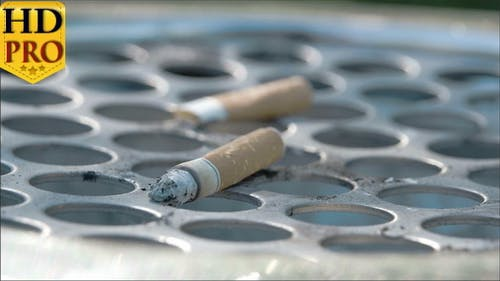 Closer View of the Cigarette Butt on the Bin