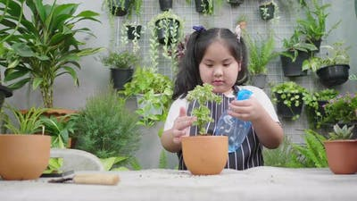 Asian girl spraying a small plant in flowerpot at home