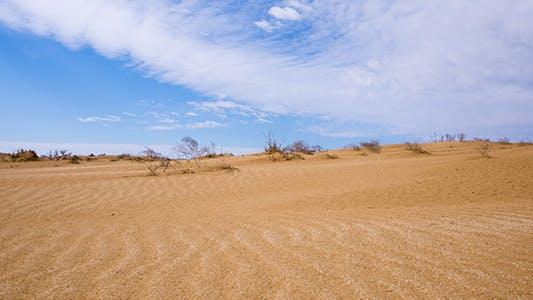 Thumbnail for Desert 6