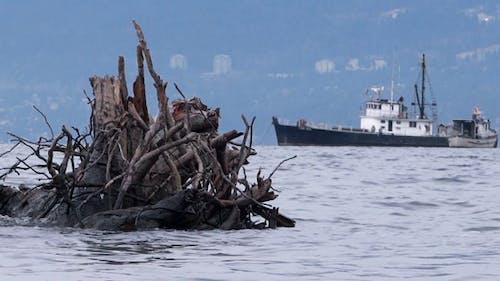 Sea Inlet - Fishing Boats