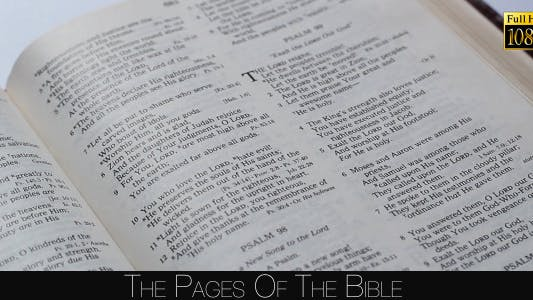 Thumbnail for The Pages Of The Bible 2