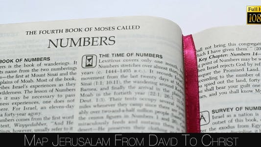 Thumbnail for The Book Of Numbers