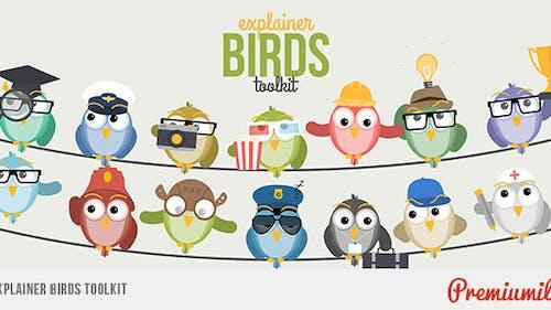 Explainer Birds Toolkit
