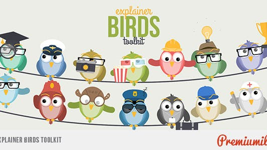 Thumbnail for Explainer Birds Toolkit