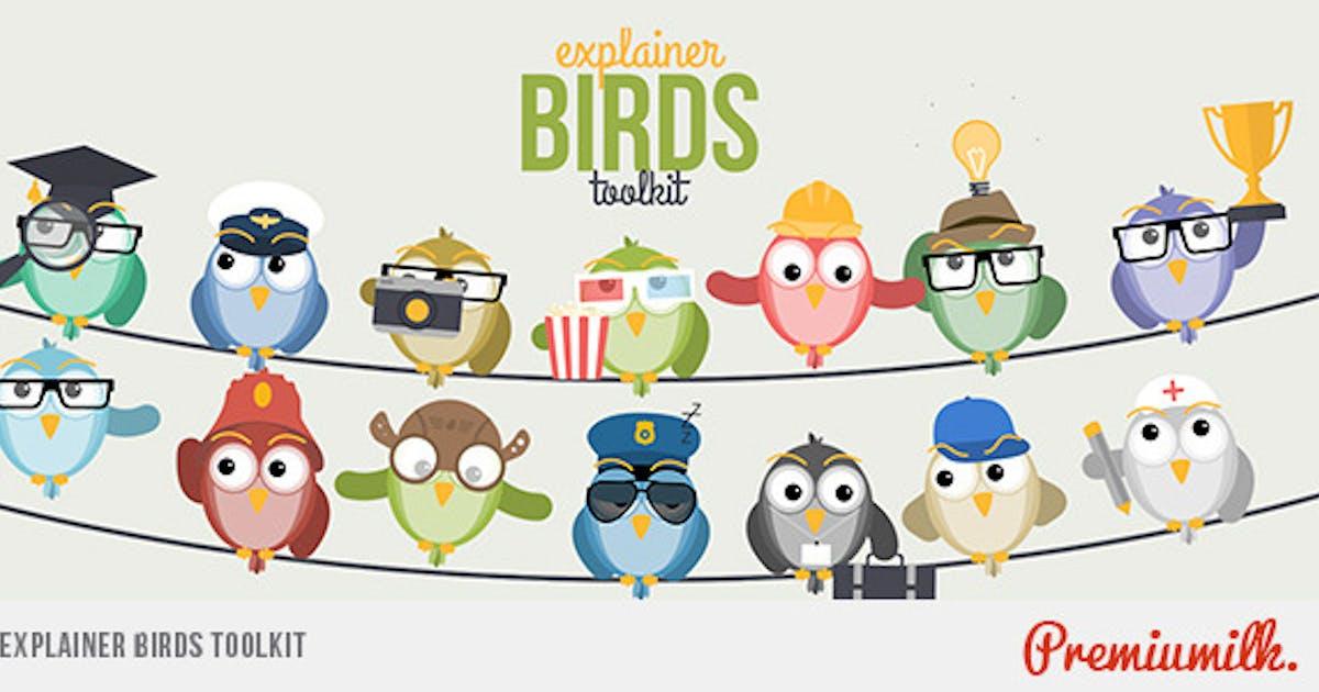 Download Explainer Birds Toolkit by Premiumilk