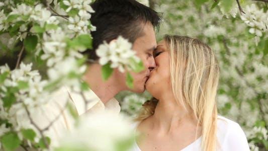 Thumbnail for Spring romance