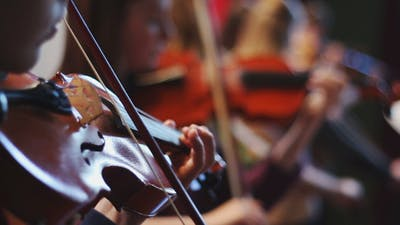 Ensemble Plays the Violin