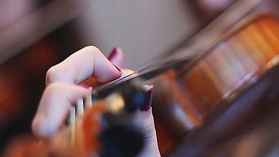 Musicians Playing Violin