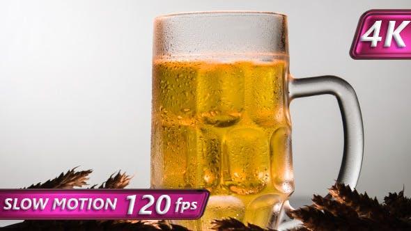 Lager Beer in a Mug