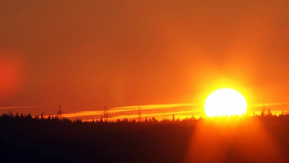 Cover Image for Sunset Over the Forest