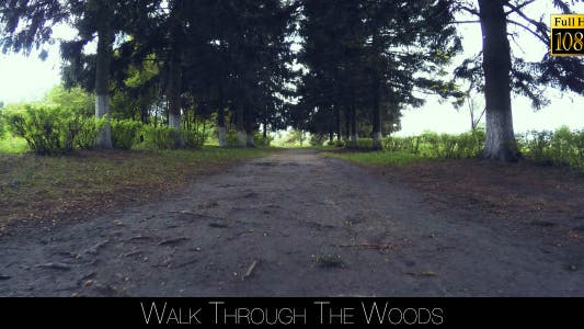 Cover Image for Walk Through The Woods 3