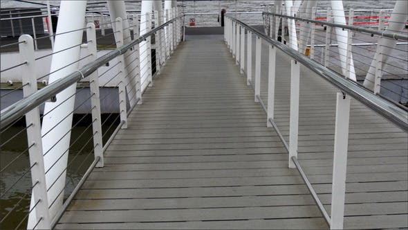 Cover Image for The Pathway to the Ferry Boat on Dock