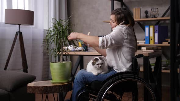 Thumbnail for Female in Wheelchair Telecommuting in Home Office