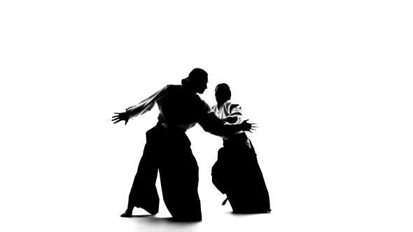 Thumbnail for Black Silhuettes of Man and Woman Showing Aikido Techniques. Isolated on White. Slow Motion.