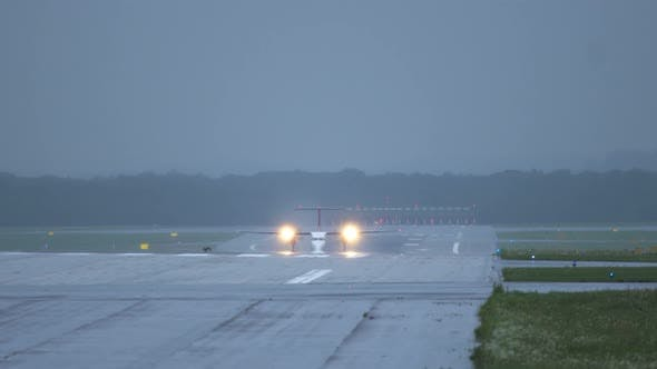 Thumbnail for Hare Run Across Runway in Front of Airplane