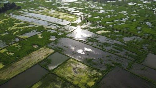 Aerial beautiful sun light reflect in flood water