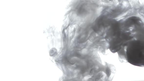 Thumbnail for Lot of Smoke, on White