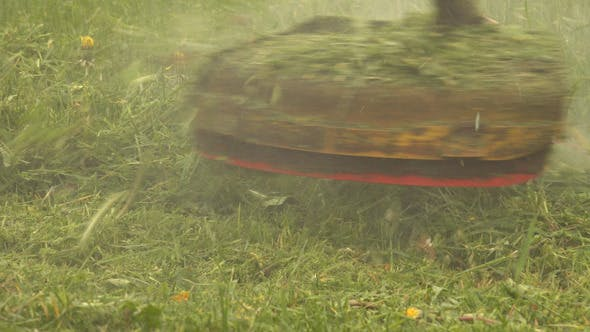 Thumbnail for Grass Trimmer