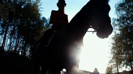 Thumbnail for Beautiful Girl  Riding a Horse Against Sun 10
