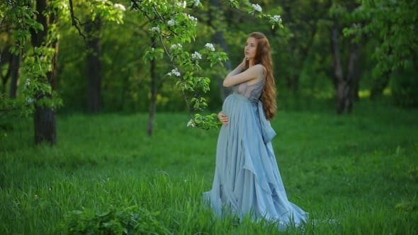 Thumbnail for Young  Pregnant Woman Relaxing And Enjoying Life