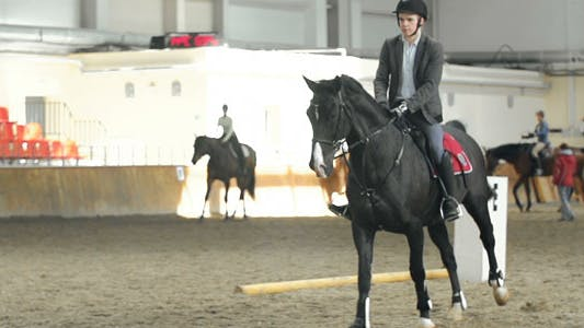 Thumbnail for Show Ring Activities