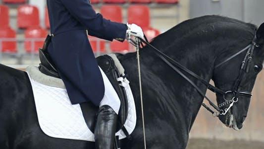 Thumbnail for Headless Horseman