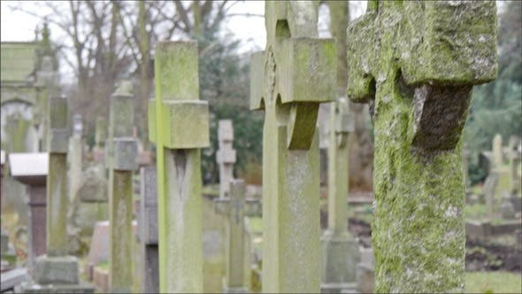 Old and Mossy Gravestones Lined Up in the Cemetery