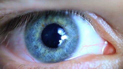 Retina Eye