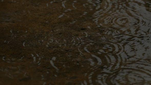 Thumbnail for Rain Water Drop