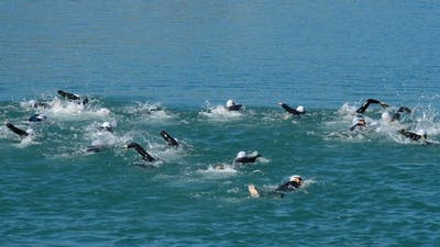 Swimmers Swimming in a Triathlon