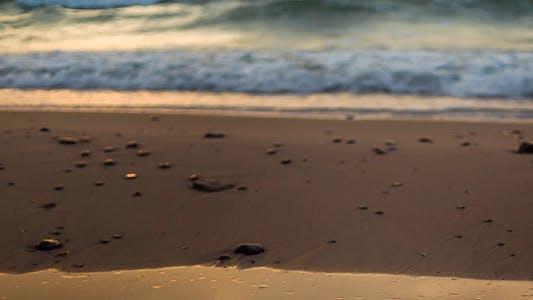 Thumbnail for Walking Along the Shore