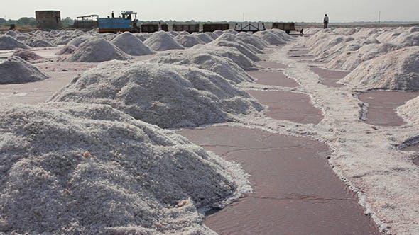 Thumbnail for Salt Mining On Sambhar Lake In India