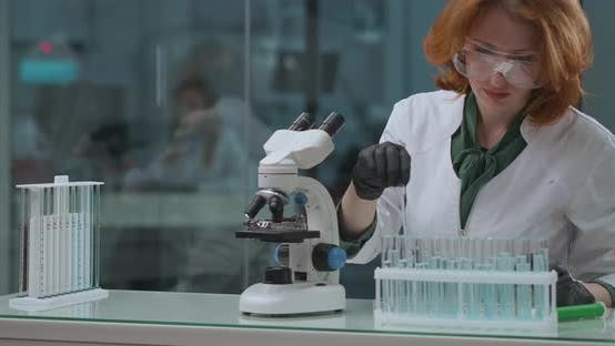 Laboratory of Ecological Expertise, Woman Specialist Is Checking Water Samples on Toxic and