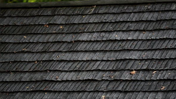 Thumbnail for Old Black Cedar Wooden Roof with Wilted Leaves