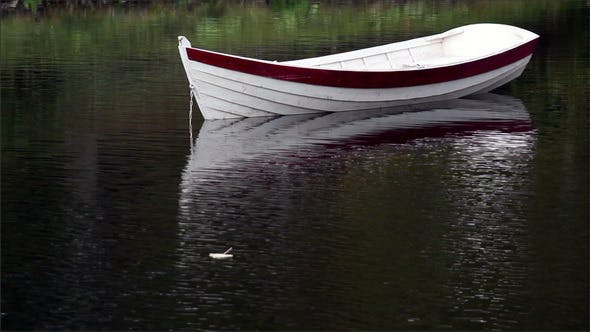 Thumbnail for Leaf Floating Near the Row Boat